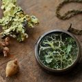 Irish lichen specimen locket