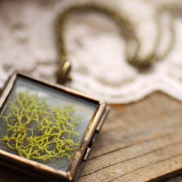 Real Moss Locket