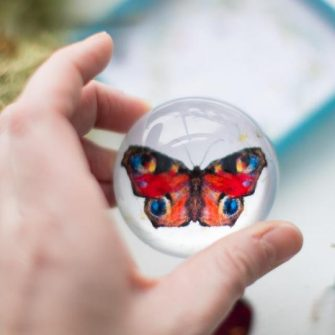 Keeper_of_Wishers_Butterfly_paperweight_by_EweSir