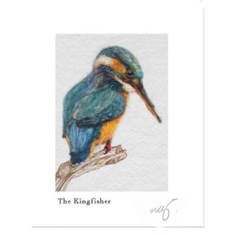 The Kingfisher Print