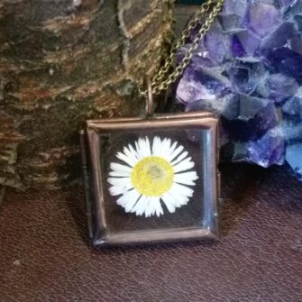 Ruby Robin Bronze Square Window Locket Daisy