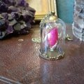 Ruby Robin Rose Bud Bell Jar 2