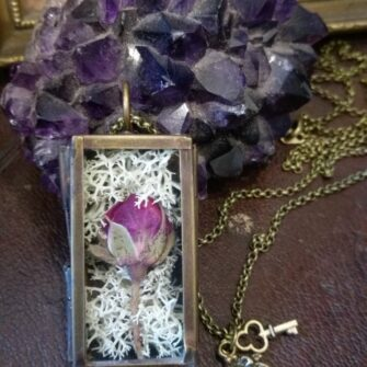 Ruby Robin Shadow Box with Rose Bud and Moss