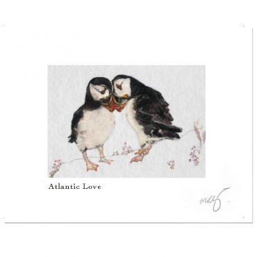 Wild Atlantic Love...