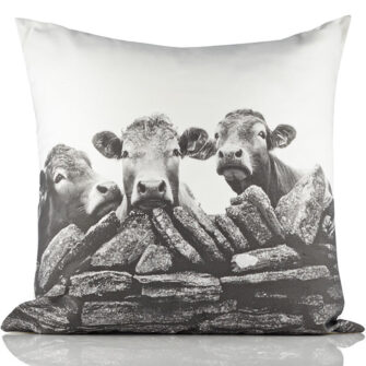 Kelly Hood Cushion Cover