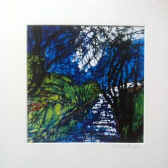 Prints and Cards by Carmel Smyth